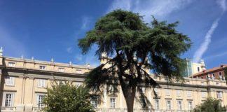visita palacio liria 19 septiembre