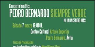 Pedro Bernardo Siempre Verde festival