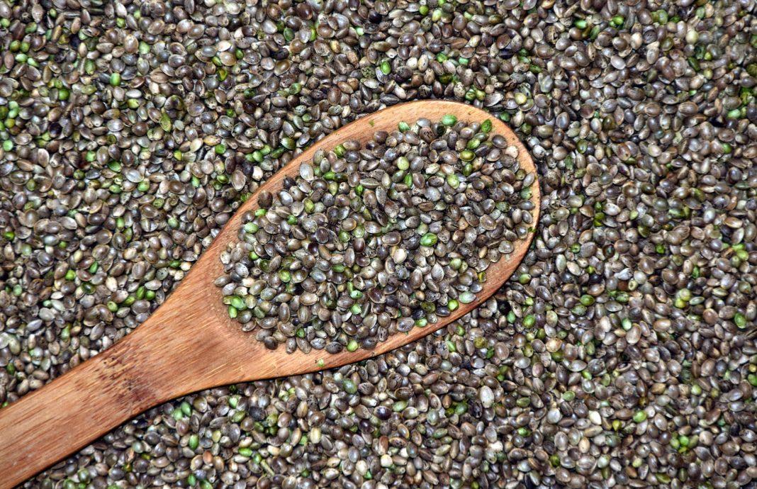 beneficios semillas cannabis