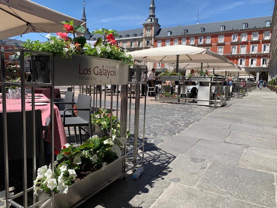 Terraza nueva Plaza Mayor, Los Galayos