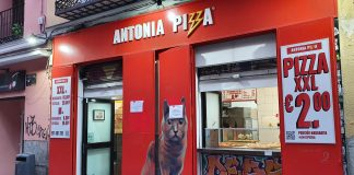 antonia pizza