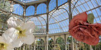 exposición floral palacio cristal petrit halilaj