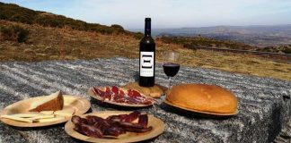 leneus vinos y cavas ecologicos