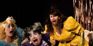 el delirio princesa teatro